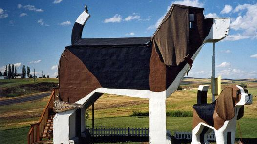 Hoteles-DogBark-Park-Inn-Idaho_CLAIMA20150611_0163_4